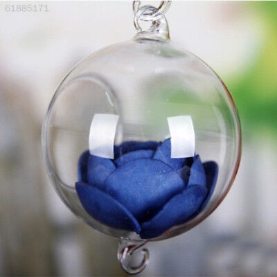 3A29 Transparent Glass Vase for Home Garden Decor Glass Clear Vase Ball Hanging