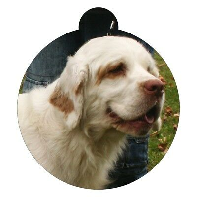 Clumber Spaniel Dog Breed Picture Pet ID tag
