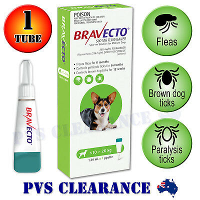 Bravecto Spot On for Medium Dogs - Green 10 - 20 kg - Spot-on Flea & Tick