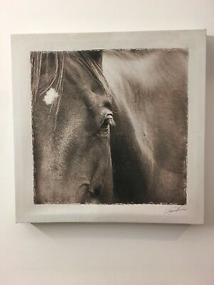 Horse Picture Frame Art