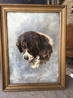 Amazing Antique Oil Painting Of A Saint Bernard Dog Framed