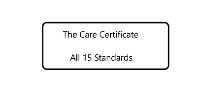 The Care Certificate - All 15 Standards - Complete Answers - PDF To Your E-Mail