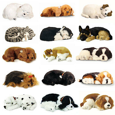 Precious Petzzz Animal Dog Cat & Bed Lifelike Breathing Soft Pet Boxed Gift
