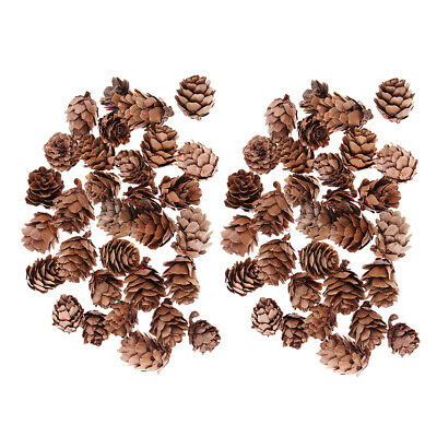 60pcs Mini Natural Dried Pine Cones In Bulk For Christmas Party Ornament DIY