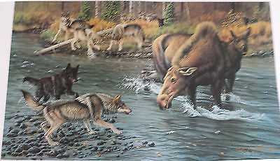 3 Wolf Prints matching numbers  S/N 10/100 by Cynthie Fisher