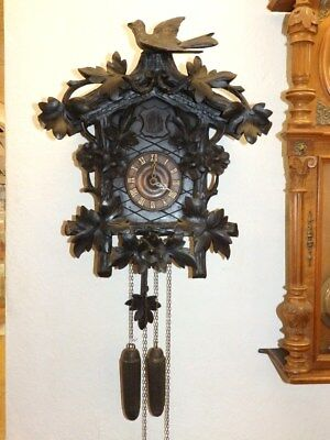 1900 / 30   Black Forest Cuckoo Clock  For A Easy Restauration