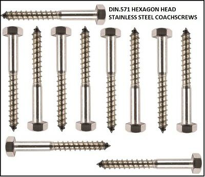 Stainless Steel Coach Screws Hex Head Lag Bolts Wood Screws M5 M6 M8 Coachscrew