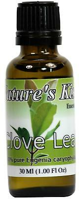Clove Leaf Essential Oil 100% Pure 30 Ml 1 Oz Therapeutic Grade By Nature's Kiss