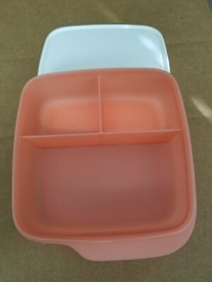 TUPPERWARE Lunch-It® Perfect Portion Divided Dish w/Seal FREE US SHIP Salmon