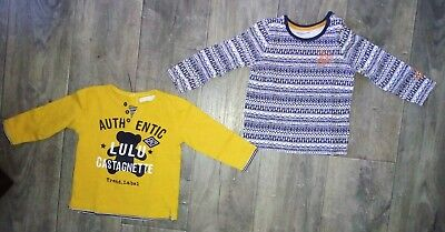 Lot 2 Tee Shirts Manches Longues 18 Mois