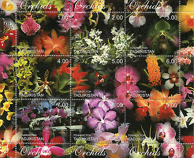 Tajikistan 2000 MNH Orchids Orchid 9v M/S Flowers Nature Stamps