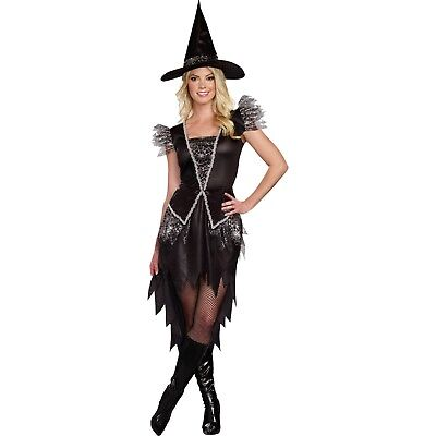 Women's WICKED WITCH Halloween Costume, Black & Silver Dress & Hat, Size Large