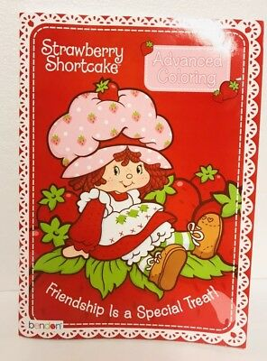 Classic Strawberry Shortcake Advanced Coloring Book Adult Arts Craft Gift New