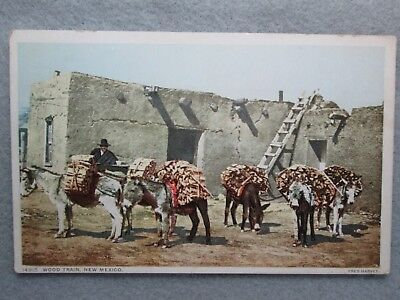 Antique Wood Train, New Mexico Fred Harvey Postcard