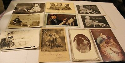 LOT of old illustrated POSTCARDS of children WITH THEIR PETS DOGS, CATS GOATS