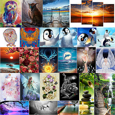 AU Full Drill 5D DIY Diamond Painting Embroidery Xmas Wall Decor +Drawing Tool