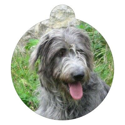 Irish Wolfhound Dog Breed Picture Pet ID tag