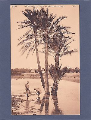 Vintage Sepia-Northern Africa-Landscape Farming-Arab Woman-Early 1900's