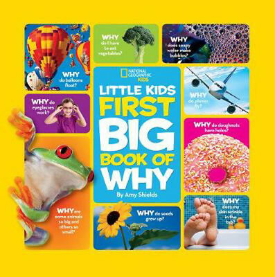 Little Kids First Big Book of Why | Amy Shields
