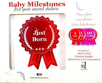 Baby Milestones First Year Award Stickers - 13 pc - Monthly Photo - Shower Gift