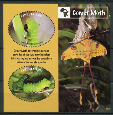 Liberia 2018 MNH Comet Moth 2v S/S II Caterpillars Moths Butterflies Stamps