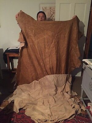 Leather Hides  Skins   M 27 Cow Hide Splits
