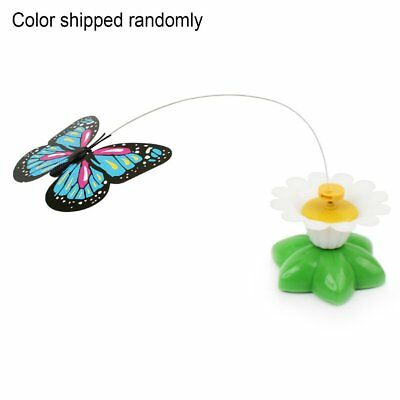 Electronic-Electric-Butterfly-Flying-Around-the-Flower-Pet-Cat-TCR