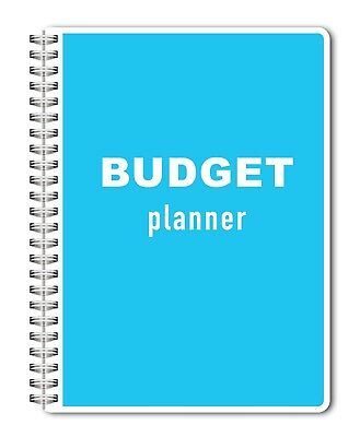 2019 budget planner bill organizer monthly personal finances