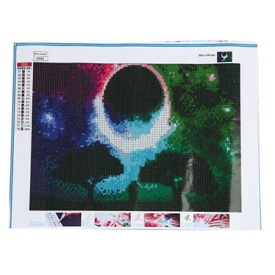 2X(5D Diamond Painting Kits Full Drill Diamond Embroidery,10x16 Inches E3C4)