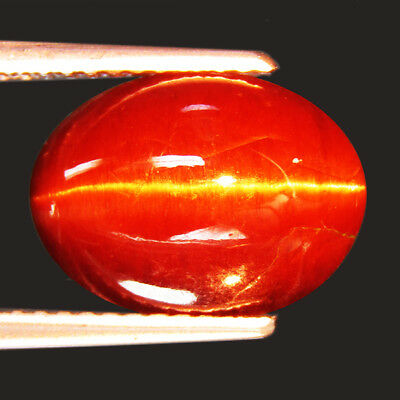 5.30 Ct Fine Quality Natural Scapolite Cat's Eye Oval Cabochon Loose Gemstone