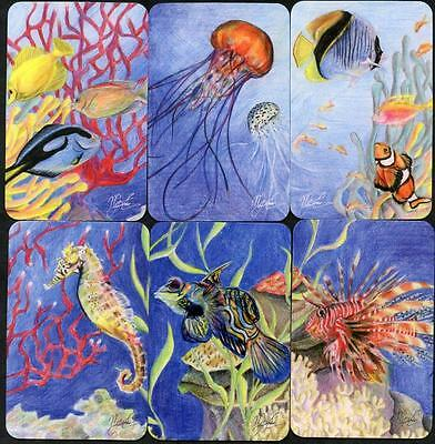 Spodooki Fish And Sea Life Theme Swap Card Set Of 6 In Excellent Condition