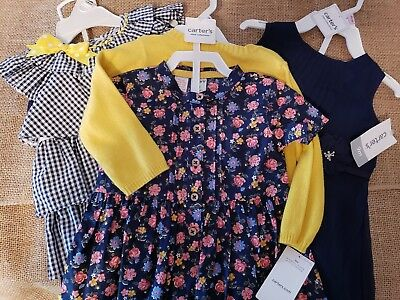 (NWT!) Baby Girl Clothes Lot, 9 Months