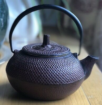 Japanese iron kettle TETSUBIN Teapot Signed Dot Pattern With Strainer