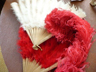 Vintage Ostrich Feathers Fans X 2 & Pink Ostrich Feather