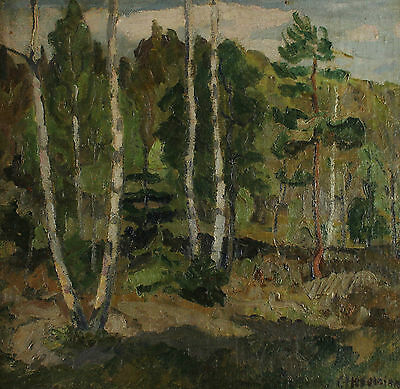 Signed - Forest with Birch