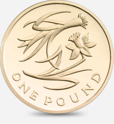£1 One Pound Coin UK Floral Emblems 2013 Near Uncirculated Condition Rare Round