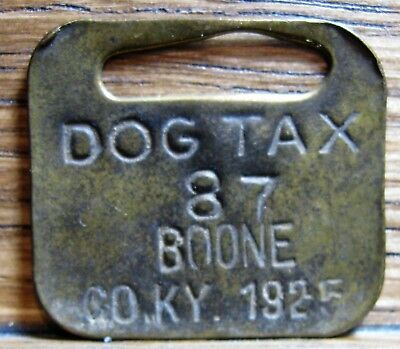 Boone County Kentucky KY dog tag tax license 1925
