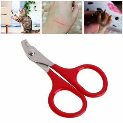 Nail Clippers Pet Cat Dog Puppy Stainless Steel Scissors Grooming Claw Cutter