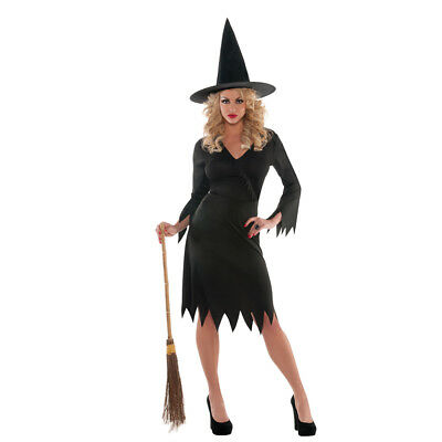 New Adults Wicked Witch Costume - Plus Size
