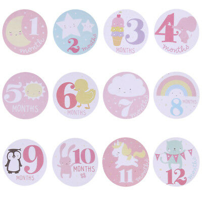 Baby Monthly Photograph Stickers Month 1-12 Milestone Stickers(Pink) #3YE
