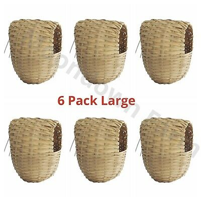 6 x Large Finch Wicker Nesting Box -15x11x11 Hooks on Back for Cage Finches