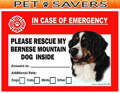 Bernese Mountain Dog Pet Savers Emergency Rescue Window Cling Sticker