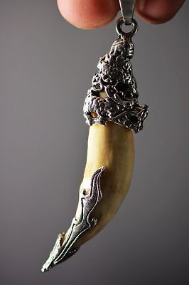 Tibetan Silver inlay dragon head wolf tooth Amulet pendant    F96