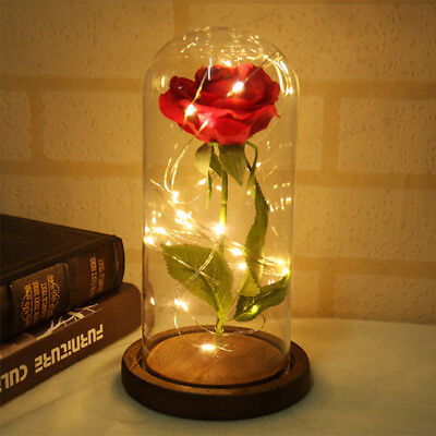 Beauty And The Beast Enchanted Red Rose Glass Dome LED Lamp Valentine's Gift Hot