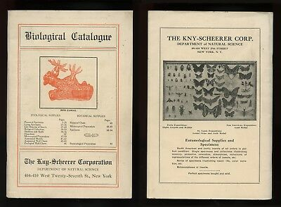 c. 1922 BIOLOGICAL SUPPLIES CATALOGUE The Kny-Scheerer Corp Preserved Living