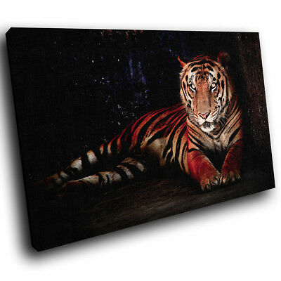 A611 Black Forest Tiger Orange Funky Animal Canvas Wall Art Large Picture Prints