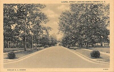Sc~South Carolina~Conway~Laurel Street Looking North~Early~Pc9276