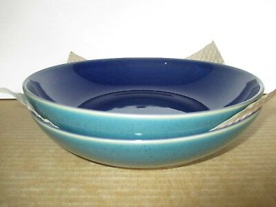 Denby Pottery Harlequin Pasta Bowls x 2 New Unused Excellent Condition
