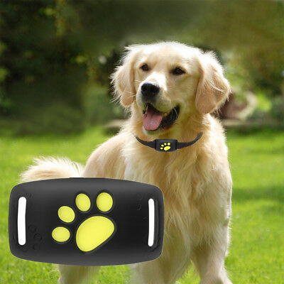Z8 - un Universale USB Animale Domestico Tracker GPS Dog Impermeabile Cat collo