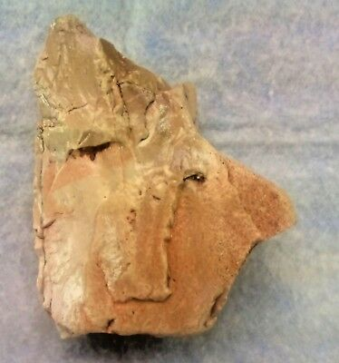 Natopic Culture ART tool, Paleolithic & Neolithic Stone Age, Rift valley 2018